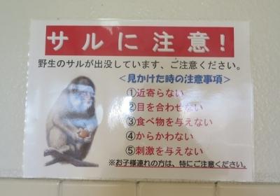 道の駅『富有柿の里・いとぬき』サルに注意