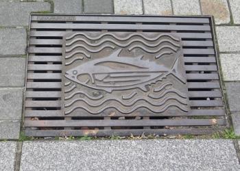 浜松市 側溝の蓋 カツオ