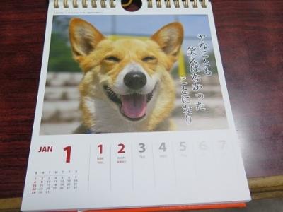コギのカレンダー