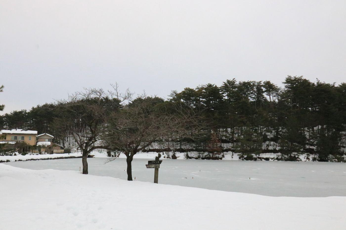 ●SA升潟2017・1・20瓢升福島潟_778