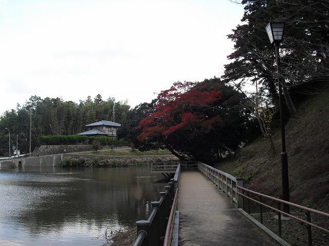 紅葉亀山公園CIMG3175
