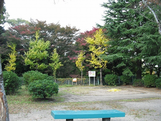 紅葉亀山公園CIMG3178