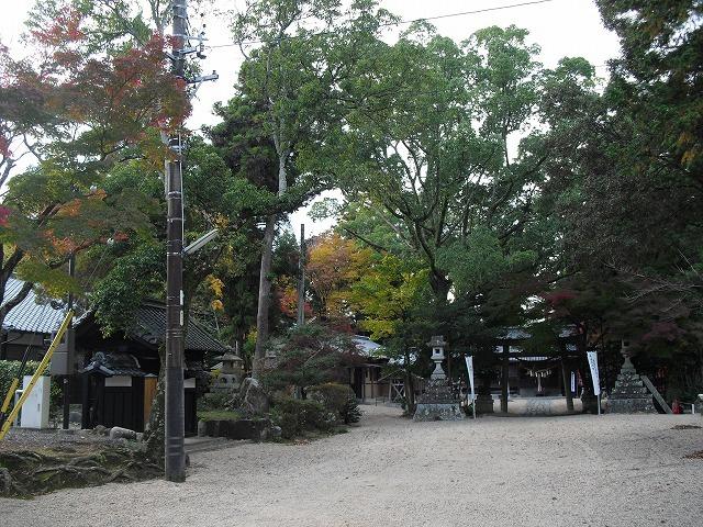 紅葉亀山神社CIMG3180
