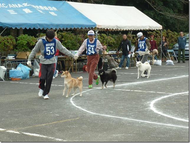201611NKC三重CH展09-01