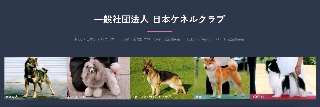 20161201-NKCHP.jpg