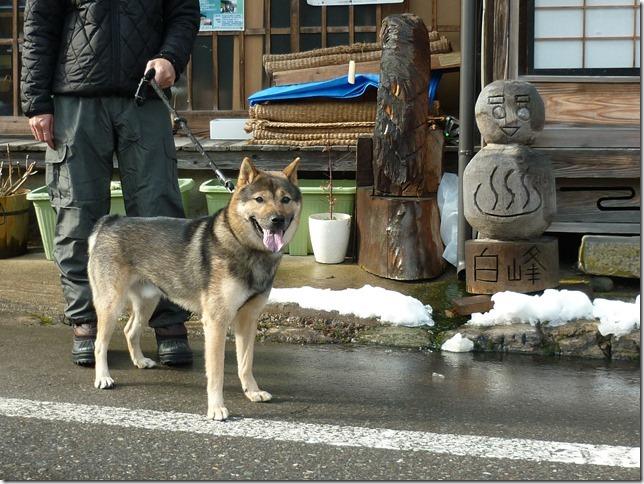 201701日帰り雪遊び02-11