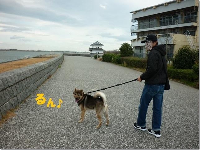 201701七里の渡-03