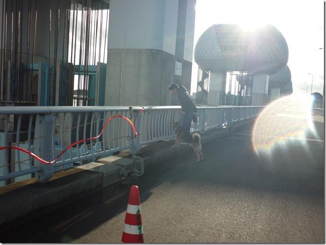 201701長良川河口堰-11