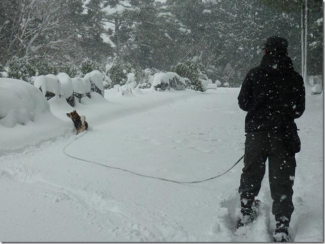 20170115雪遊び04-25