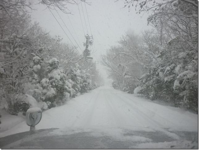 20170115雪遊び05-03