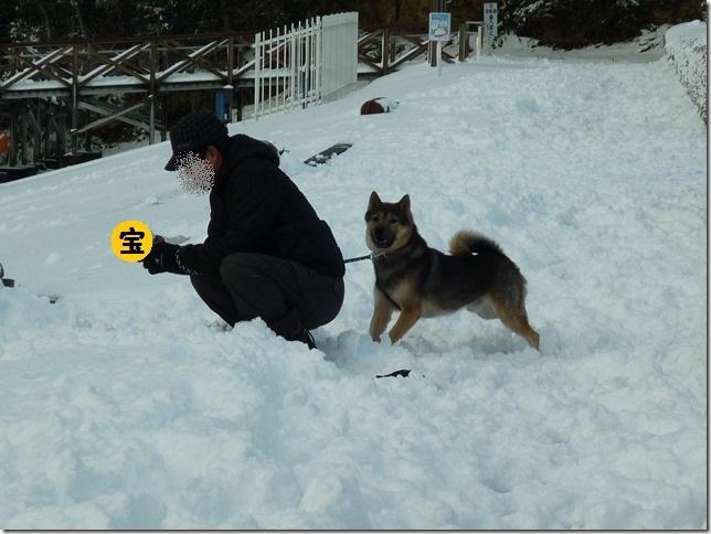 20170115雪遊び06-02