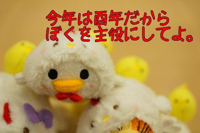 48_2017010101260326d.jpg