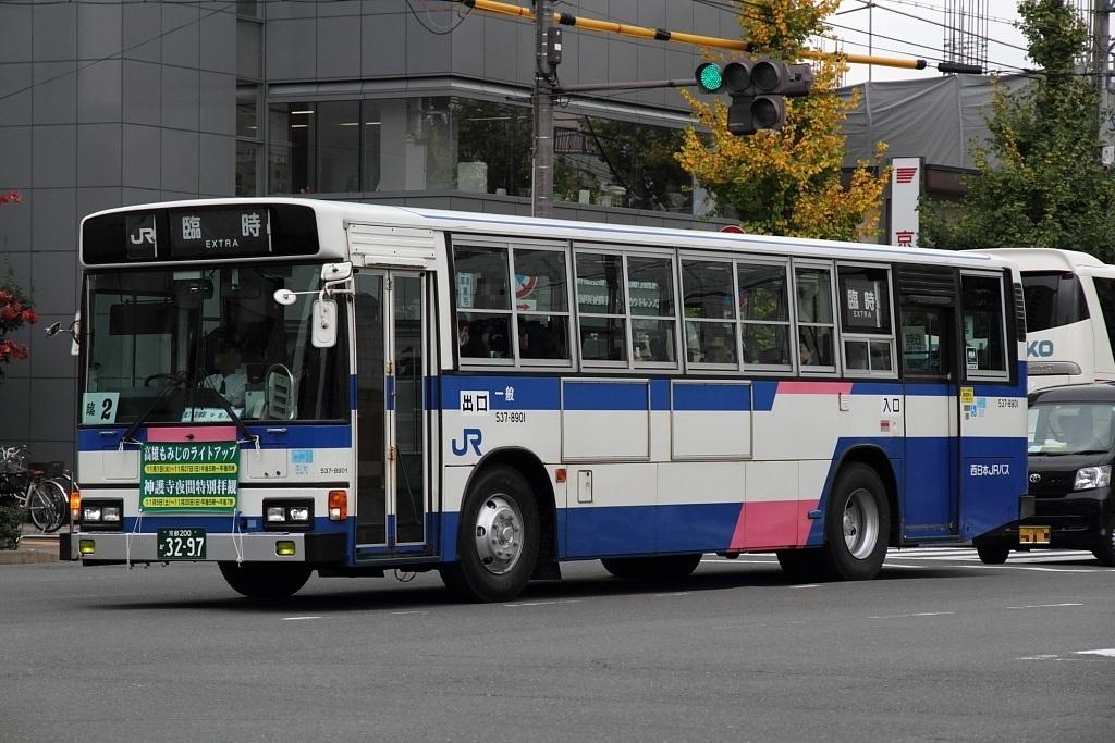 537_8901.jpg