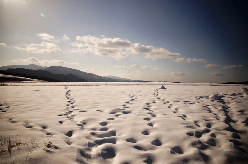 雪景色ケラレ-5