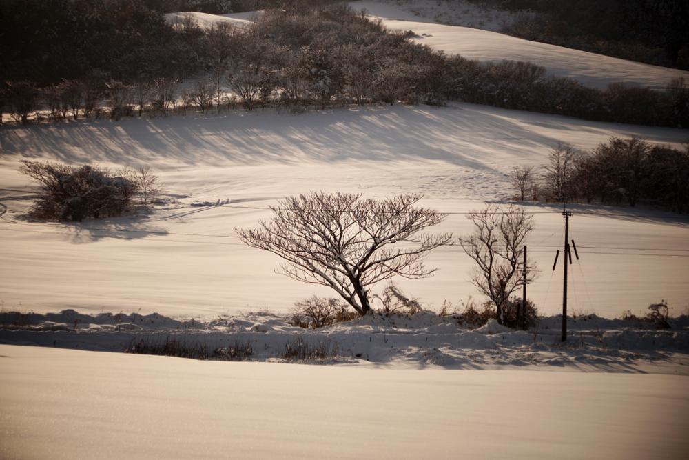 雪景色ケラレ6