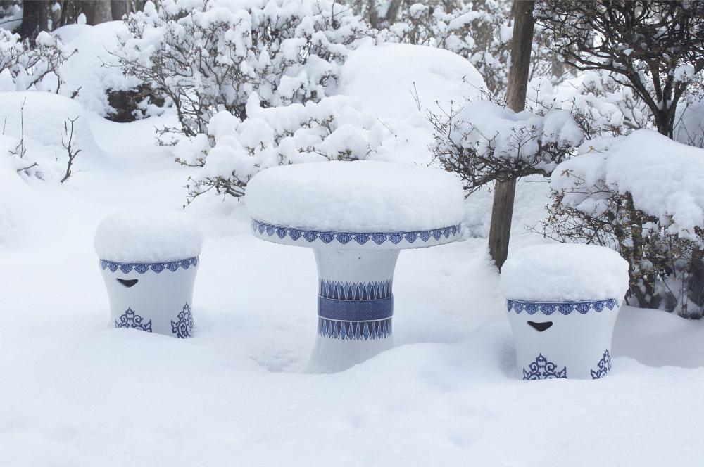 庭の雪-3