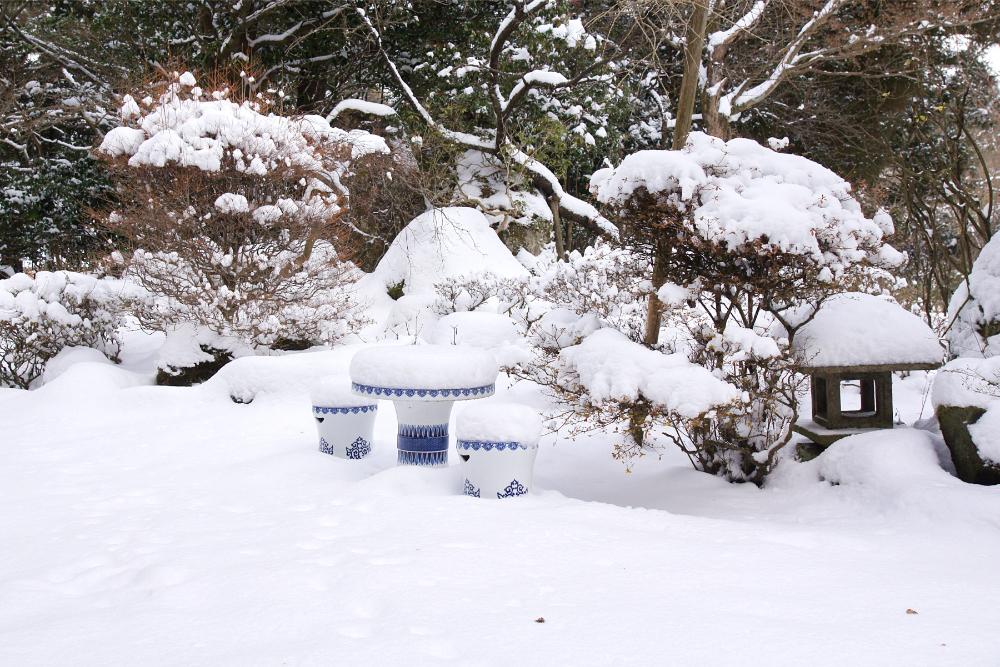 庭の雪-2