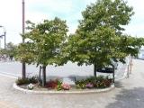 JR岩村田駅 岩村田西本町沿道土地区画整理事業竣工記念碑 全景