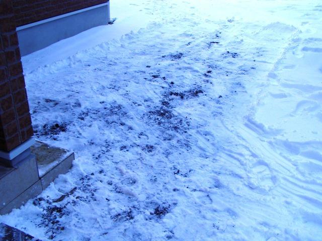 玄関前除雪0121