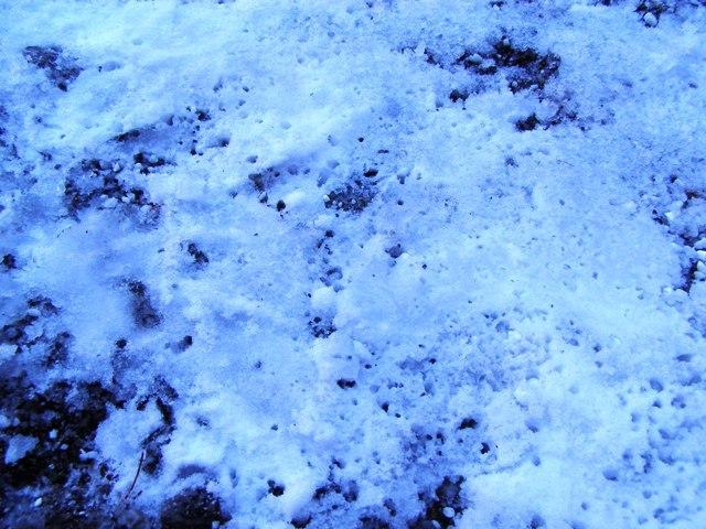 玄関前融雪剤散布0121
