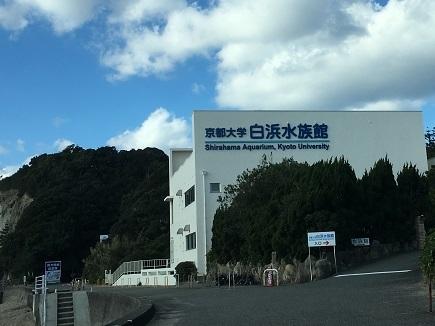 12172016 京大白浜水族館S1