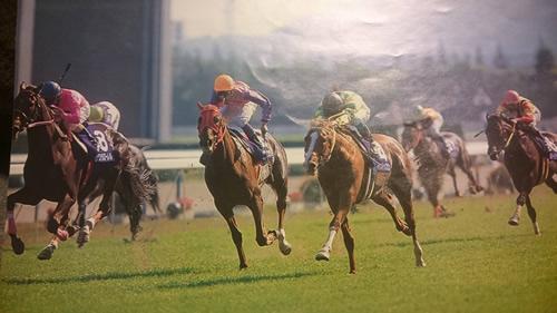 1997年 競馬カレンダー 12