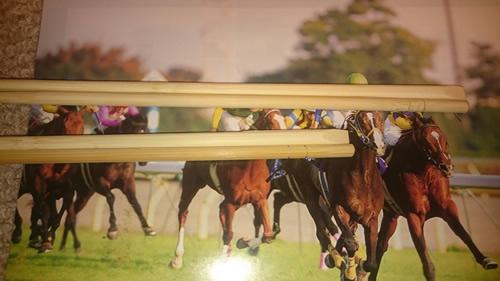 1997年 競馬カレンダー 7