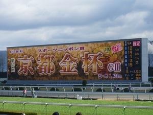 初めて京都競馬場に行ったんだが