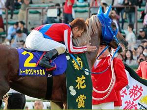 【悲報】トーホウジャッカル引退、種牡馬になる方向