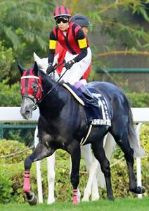 エイシンヒカリが引退、種牡馬に