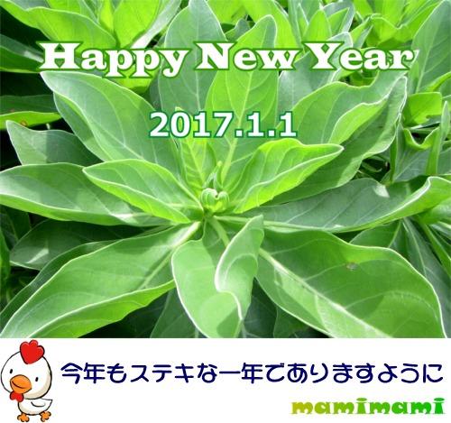 2017 mamimami