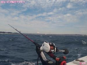 2016-12-29船でアマダイ (3)