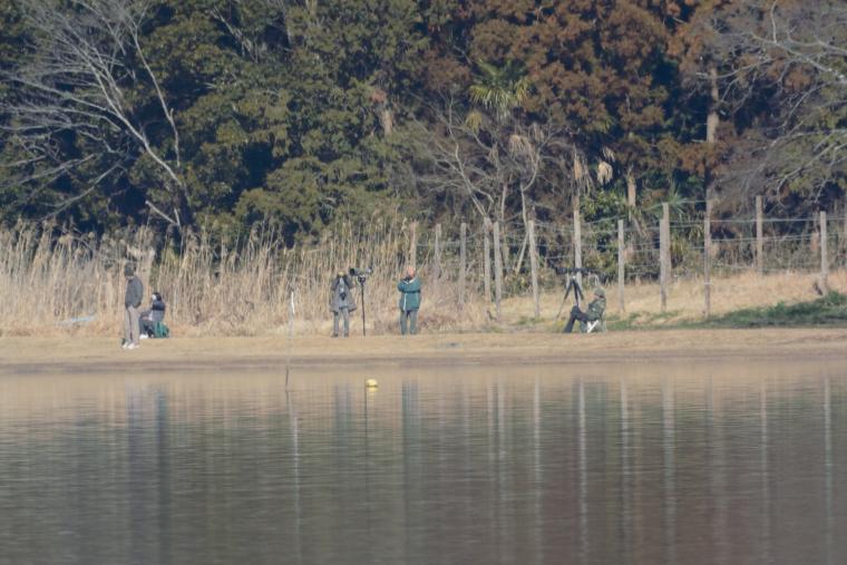 親沢公園のカメラマン