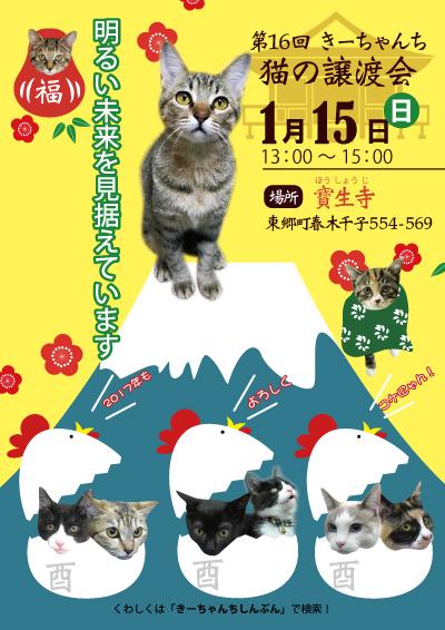 猫の譲渡会のポスター