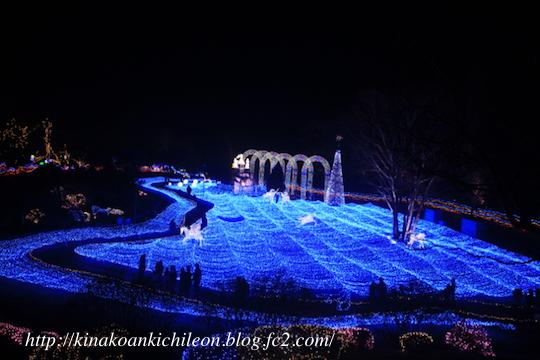 170120 Kyoto illumiere 7