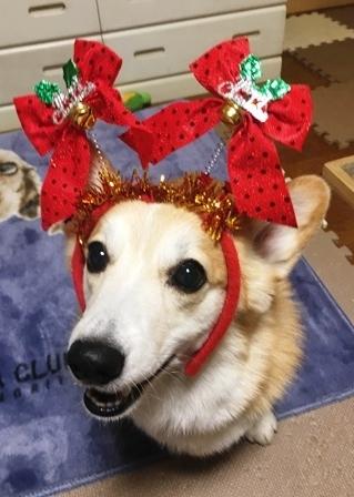 クリスマス 10