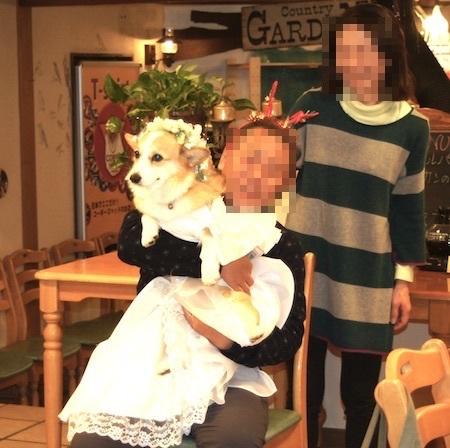 ひめこちゃんと家族写真