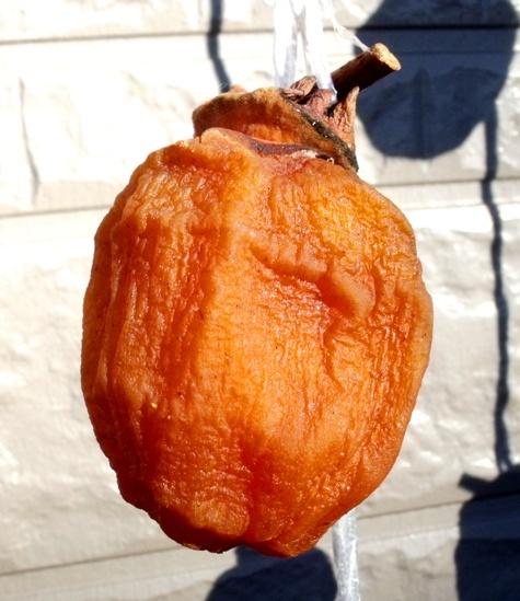 20161218 霜と干し柿取り入れ 055-2