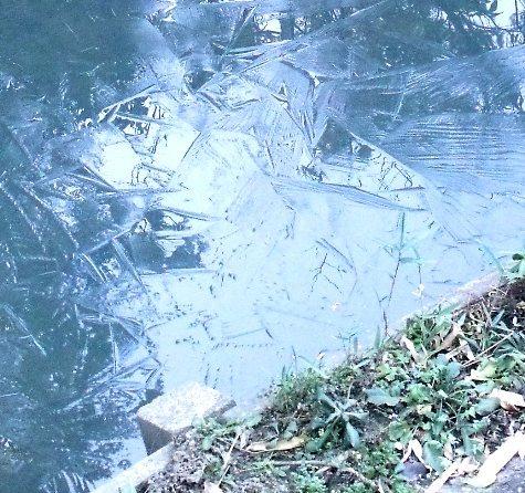 20170106 初氷 006-2