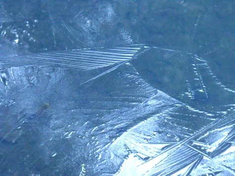 20170106 初氷 009-2