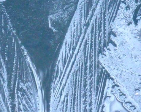 20170106 初氷 022-2