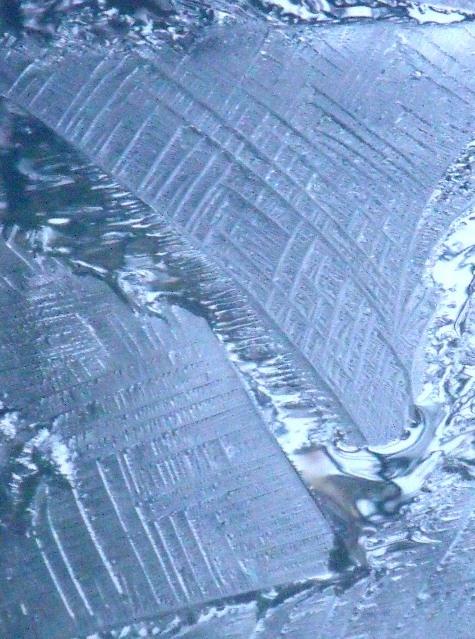 20170106 初氷 023-3