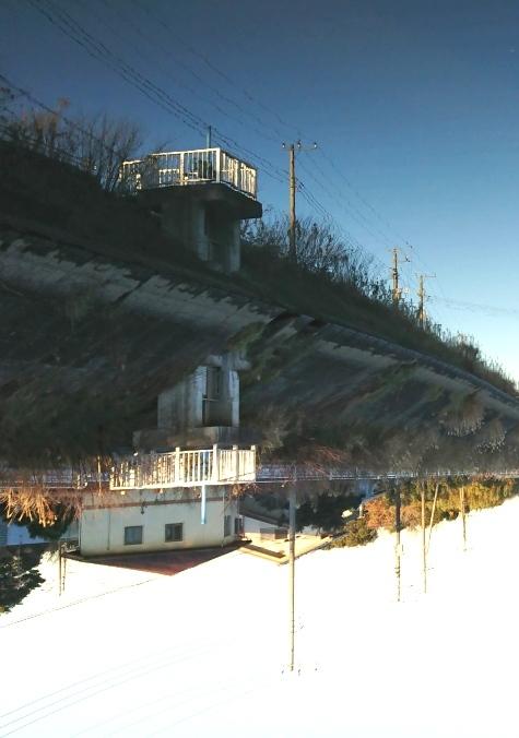 DSC_0550-5.jpg