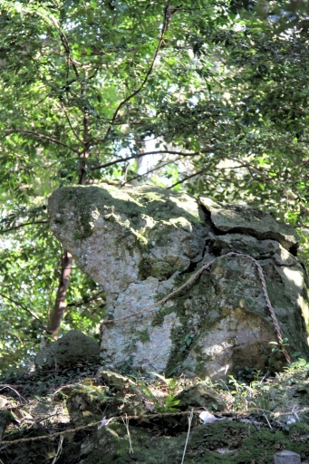 嵩神社の岩