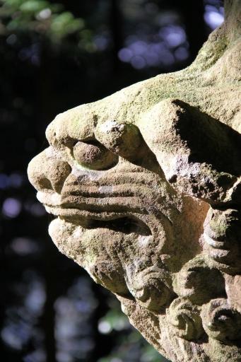 嵩神社の狛ワンコ