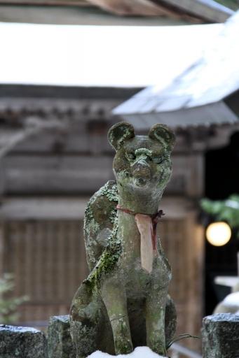 玉作湯神社境内稲荷宮の狛キツネさん