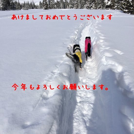170101_01.jpg