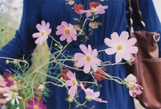 TOY-1807_Nikon.jpg