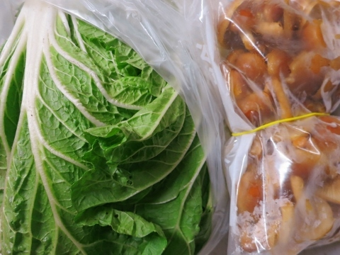 白菜は万能野菜