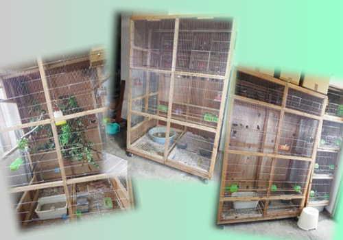 江頭禽舎2